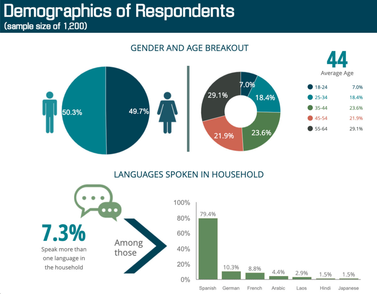 visme case study - demographics data visualization