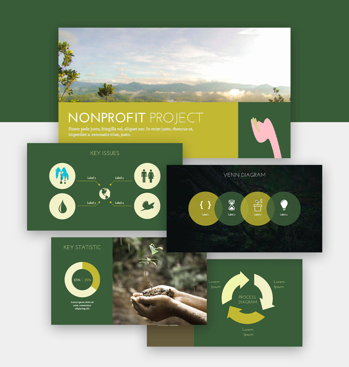 powerpoint infographic - nonprofit presentation template