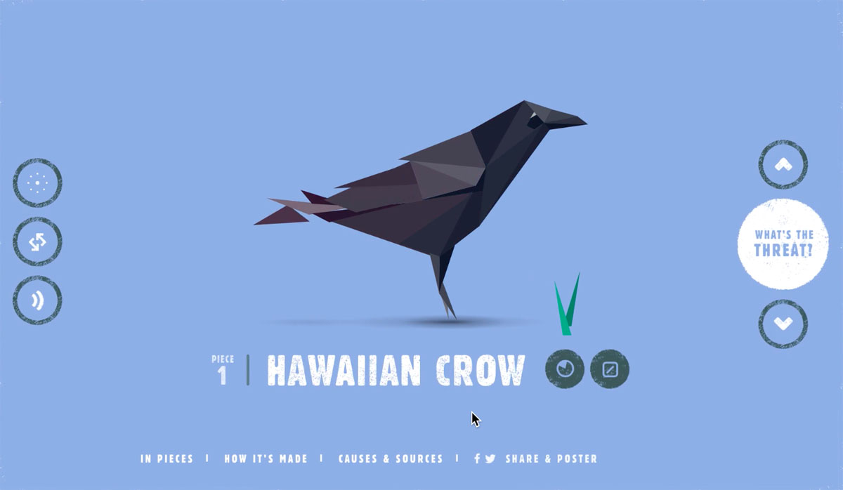 animated interactive infographics - species in pieces