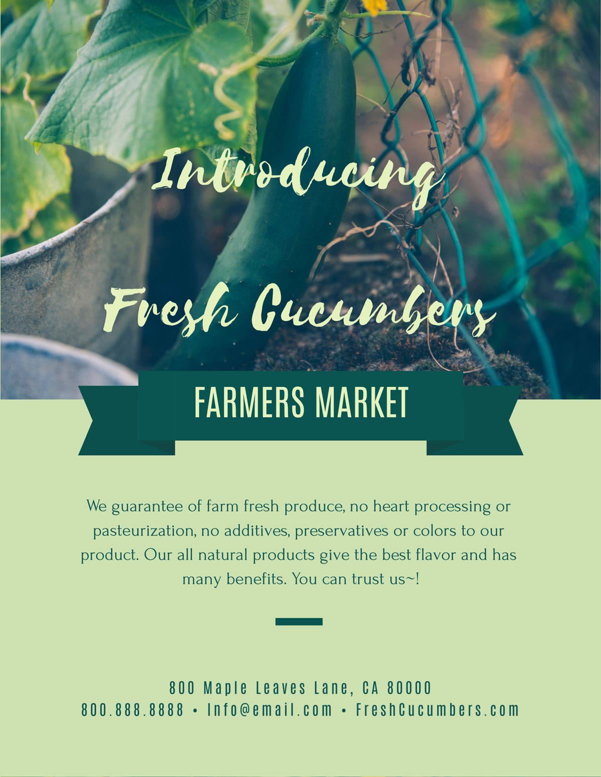 flyer templates - farmers market organic green nature