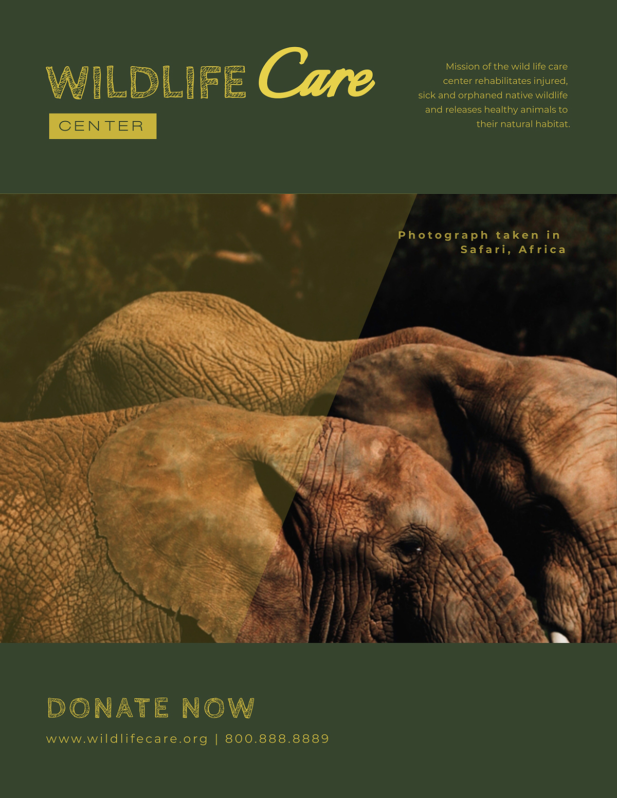 An elephant nonprofit flyer template available in Visme.