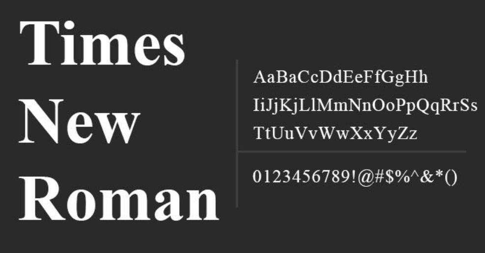 The font Times New Roman.