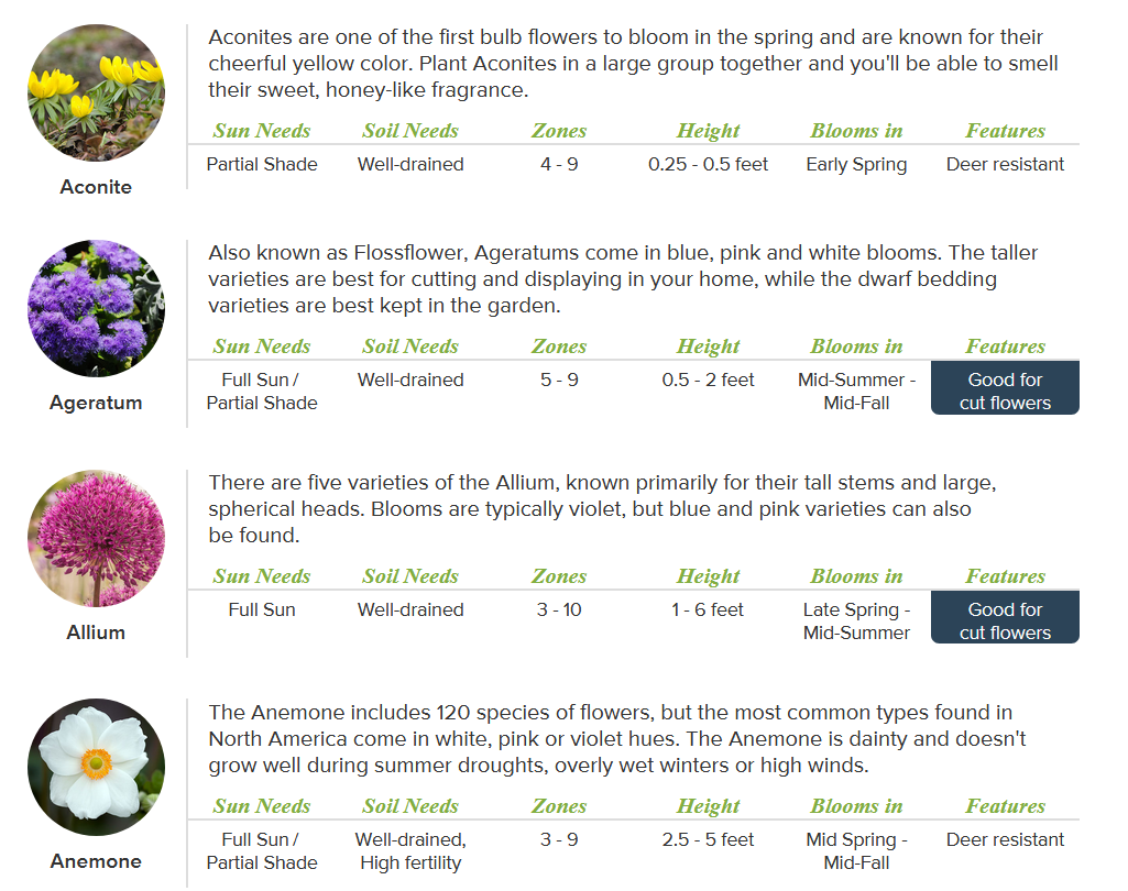 A screenshot of a content marketing campaign by ProFlowers.