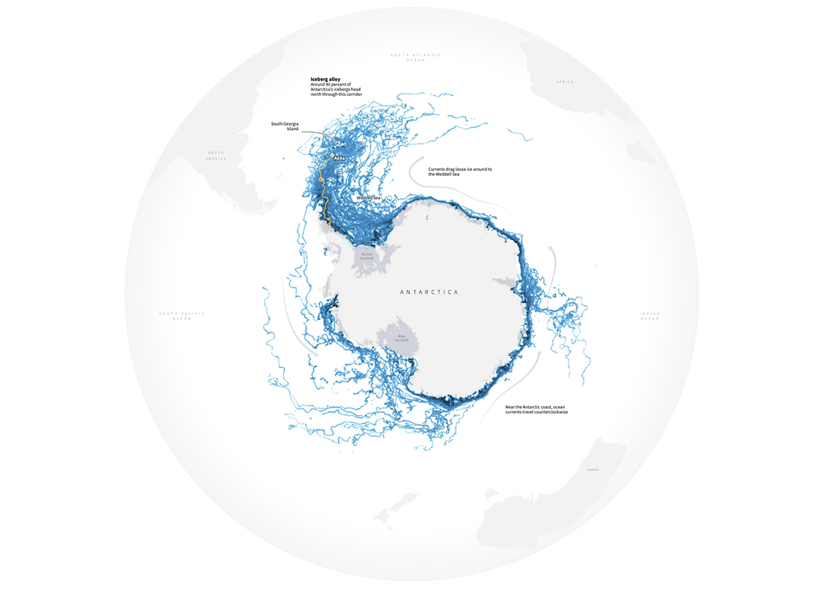 A data visualization of icebergs due to climate change.