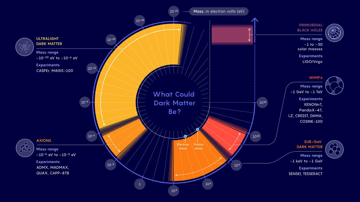 A data visualization showcasing what dark matter could be.