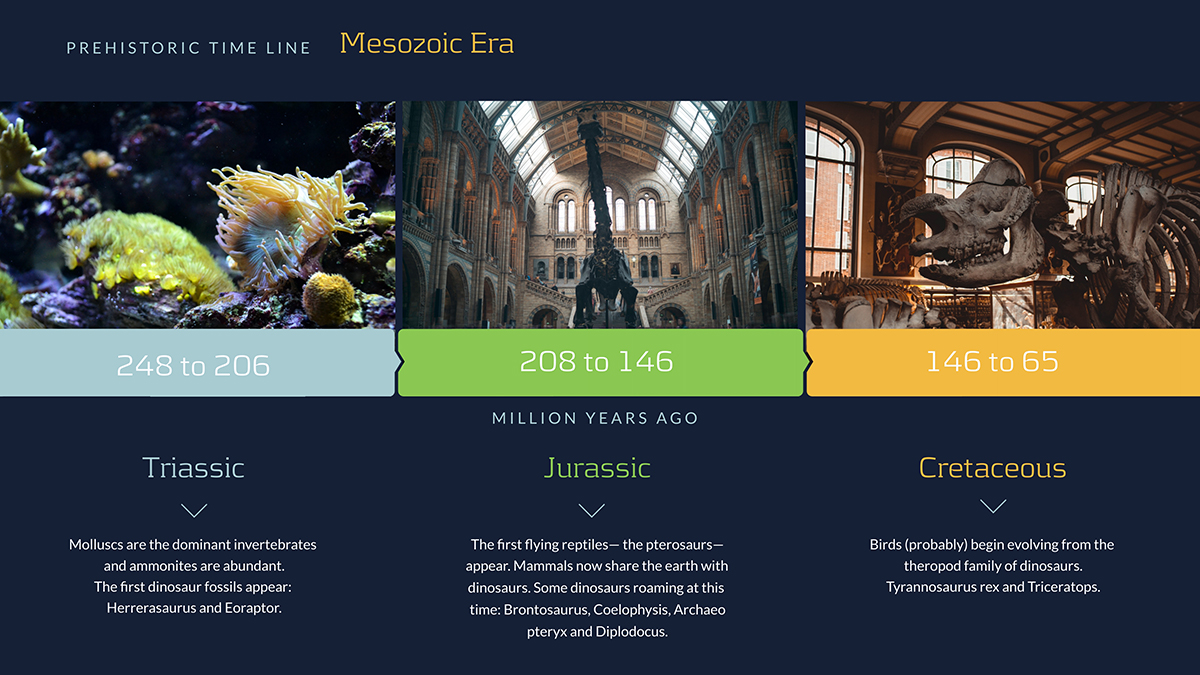 A timeline of the dinosaur eras.