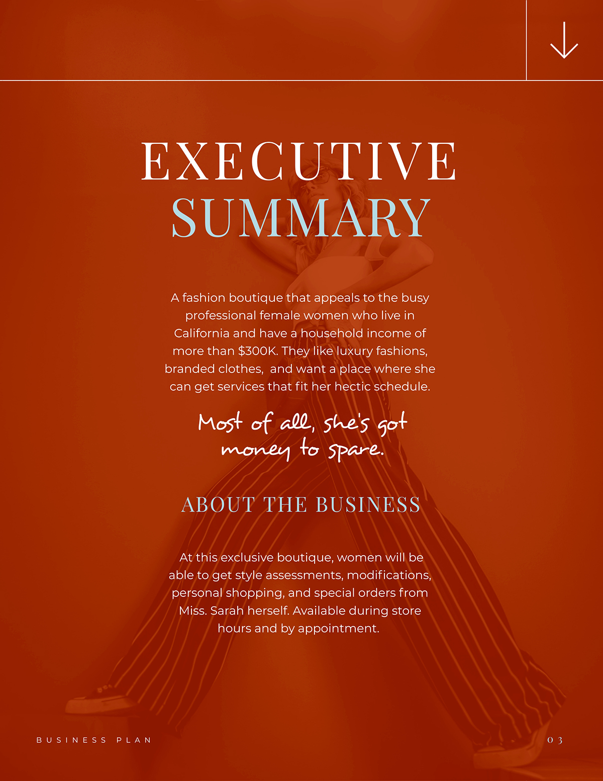 An executive summary section of a business plan.