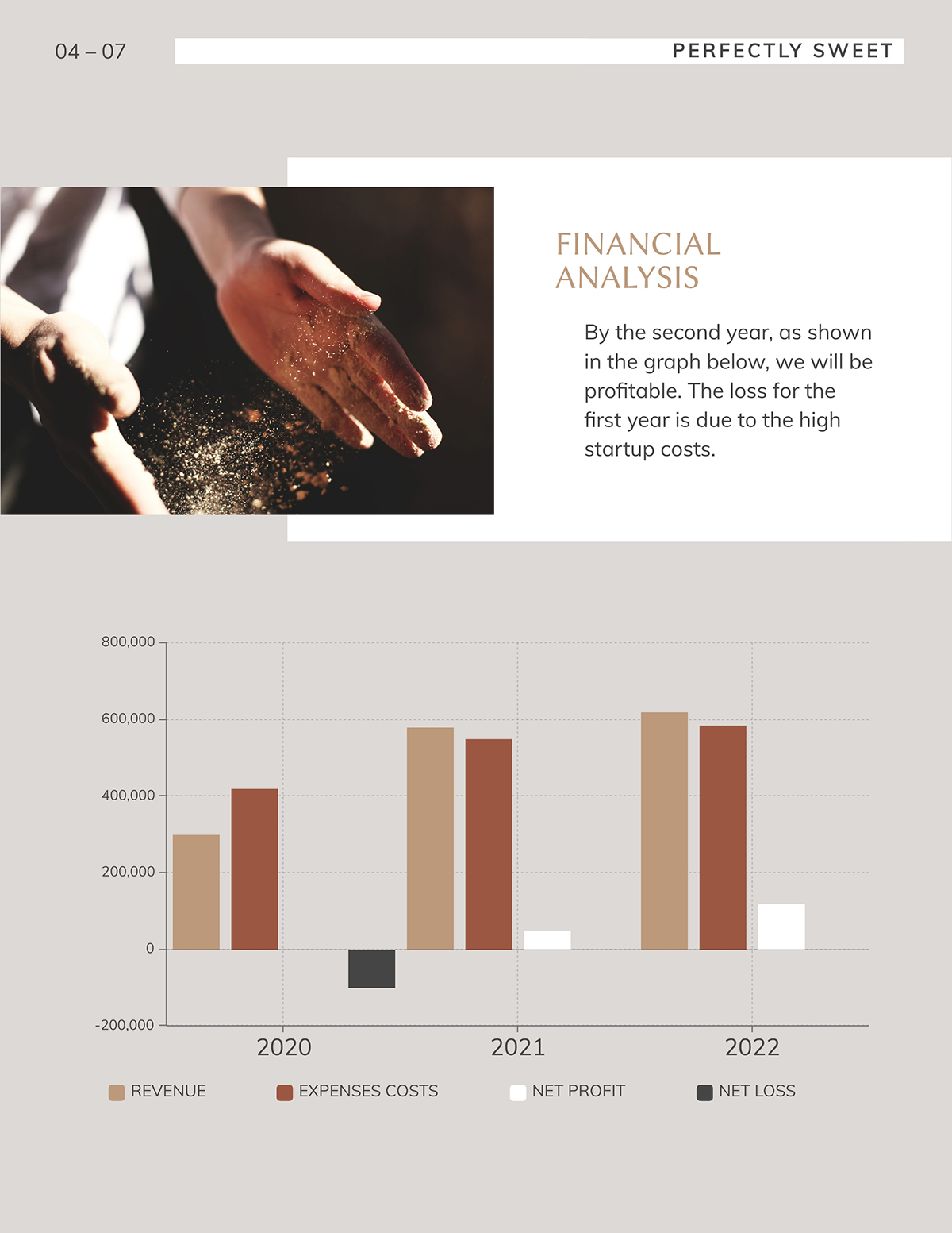 A financial analysis page from a business plan template.