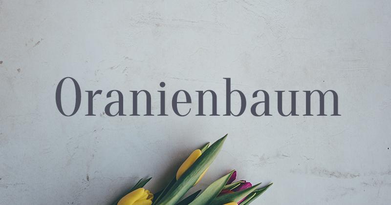 oranienbaum 50 best free elegant fonts