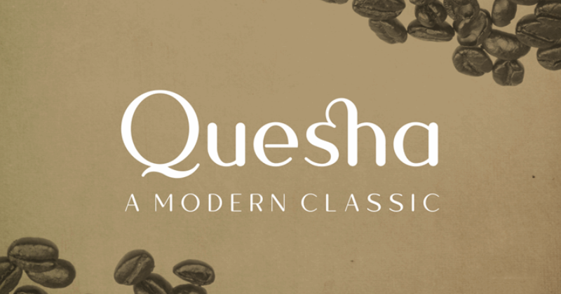 quesha 50 best free elegant fonts