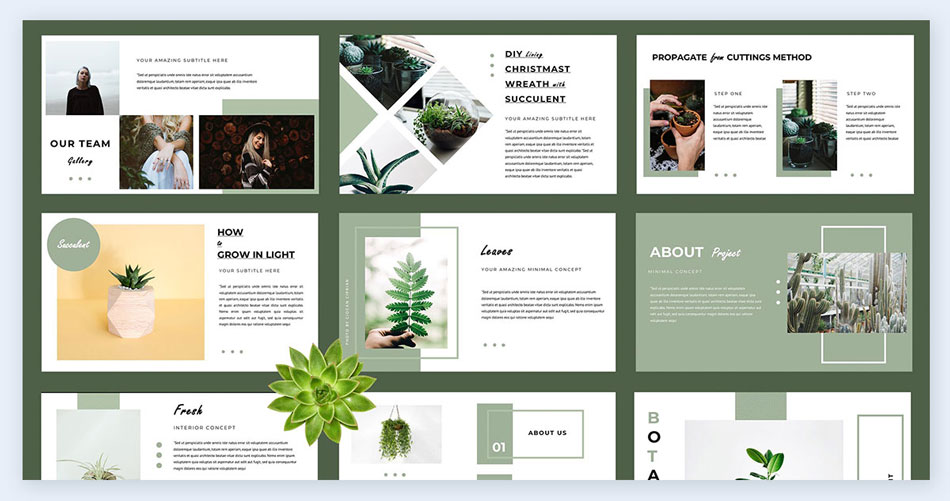 Go-with-nature creative presentation ideas
