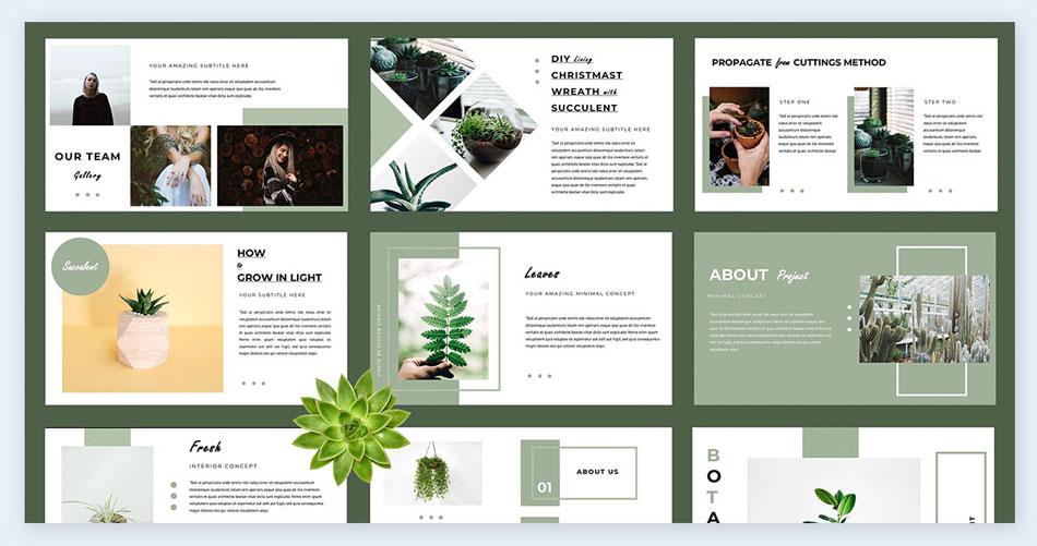 Go-with-nature creative presentation ideas