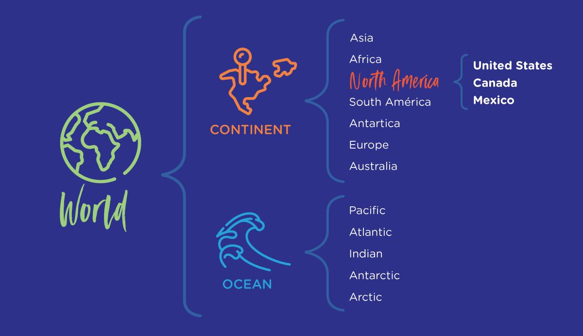 8 types of thinking maps brace map