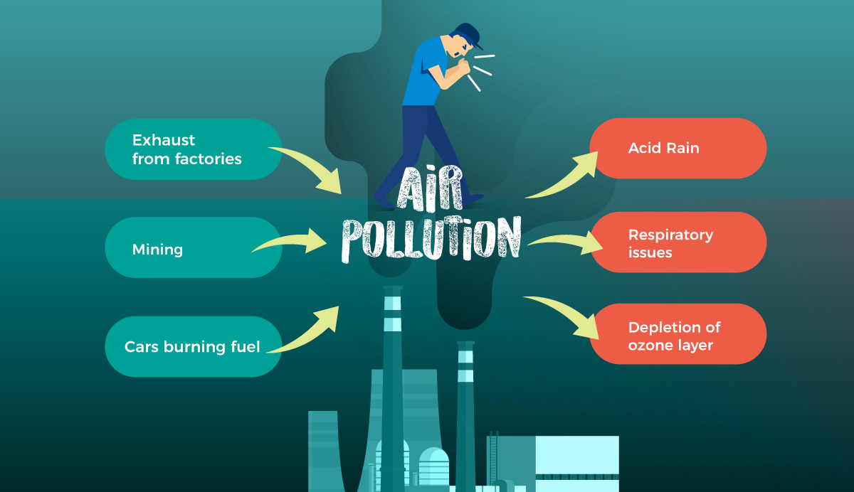 A cause and effect graphic organizer about air pollution.