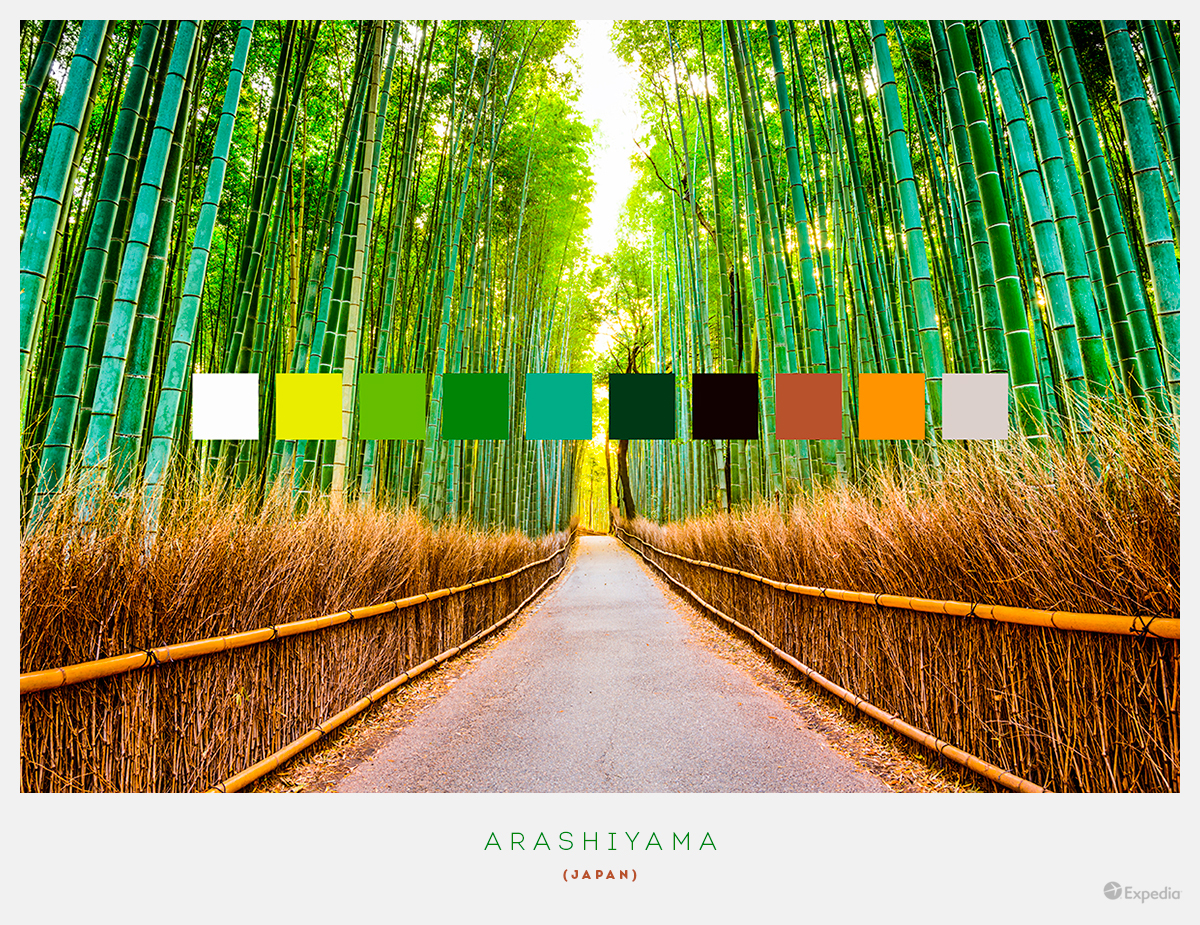 Japan color palettes from beautiful landscapes