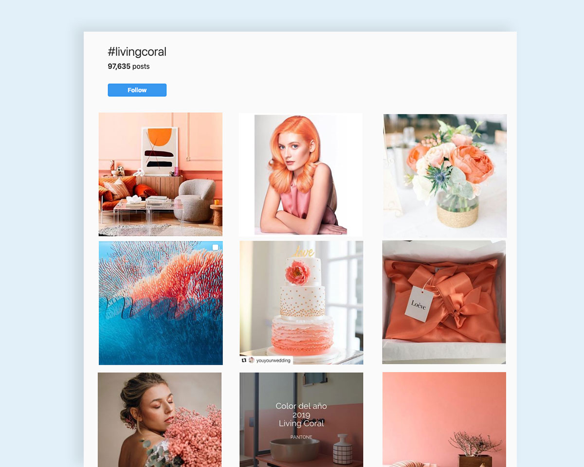 visual design trends-Pantone-Coral-3